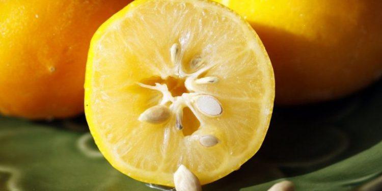 Farat e limonit, zgjidhja për dhimbjet e forta të kokës