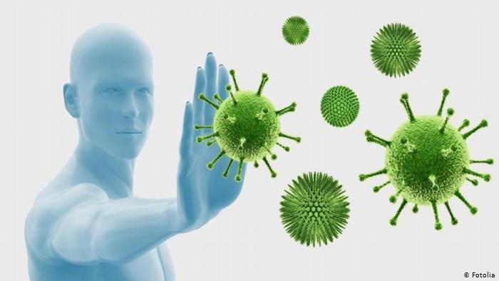 dw-si-funksionon-sistemi-imunitar-per-te-luftuar-koronavirusin-e-cdo-lloj-virusi-tjeter