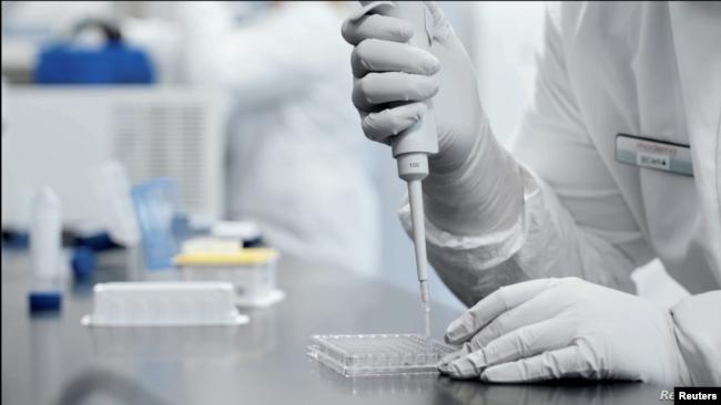 Kompanitë po punojnë që vaksina mund të bëhet gati përpara fundit të vitit
